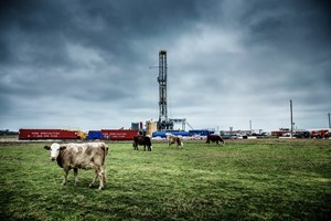 Methane emissions come from a variety of sources, including livestock.