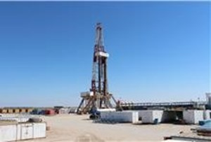 Lukoil, INPEX have concluded testing in Iraq's Eridu field 5th well