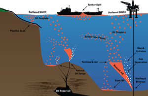 Fig. 2. A hypothetical marine cross-section displaying BLOSOM's capabilities, including the simulation of uncontrolled hydrocarbon release events, such as surface spills and subsurface blowouts, throughout the water column.