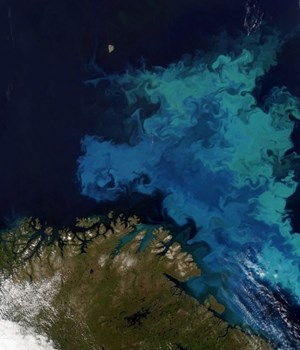 Satellite image of part of the Barents Sea (courtesy of CGG; MODIS data courtesy of NASA).