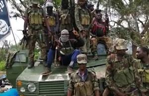 Les rebelles de l'État islamique au Mozambique