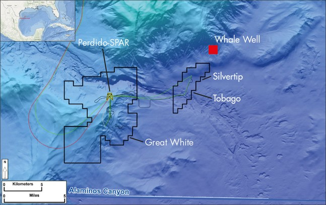 Oil giant Shell wins 9 blocks in Mexican deep water bidding